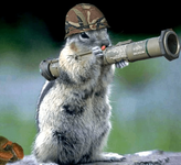 Animal Squirrel with Bazooka.png